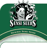 Sensi Seeds